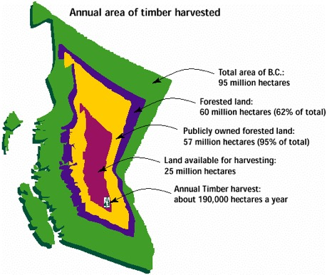 timber harvested BC